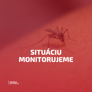 komare-2021